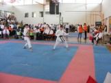 hinode_karate_diakolimpia_2015_52