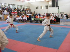 hinode_karate_diakolimpia_2015_54