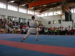 hinode_karate_diakolimpia_2015_55