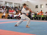hinode_karate_diakolimpia_2015_58