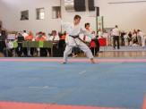hinode_karate_diakolimpia_2015_59