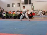 hinode_karate_diakolimpia_2015_60