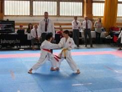 hinode_karate_sarvar_2015_11