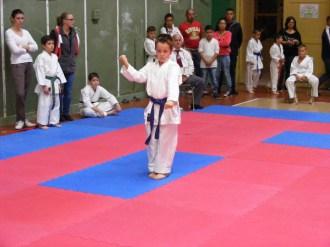Hinode_karate_SKI_2015_Szerencs_18