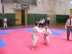 Hinode_karate_SKI_2015_Szerencs_25