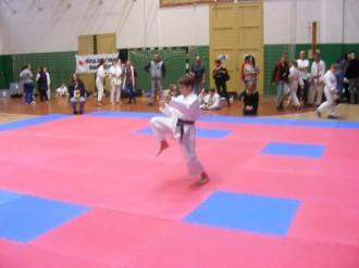 Hinode_karate_SKI_2015_Szerencs_27