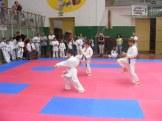 Hinode_karate_SKI_2015_Szerencs_48