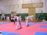 Hinode_karate_SKI_2015_Szerencs_71