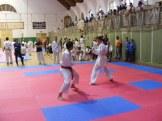 Hinode_karate_SKI_2015_Szerencs_89