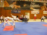 hinode_karate_Eger_SDUN_2015_0114