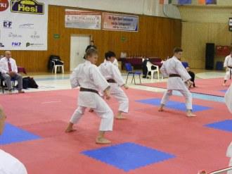 hinode_karate_Eger_SDUN_2015_0153